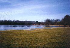 Třeboňsko - pohled na jeden z rybníků po výlovu